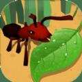 蚂蚁进化3d大树迷宫最新版